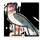 a Hieroglyphe