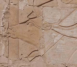 Hathorkuh im Hatschepsut-Tempel