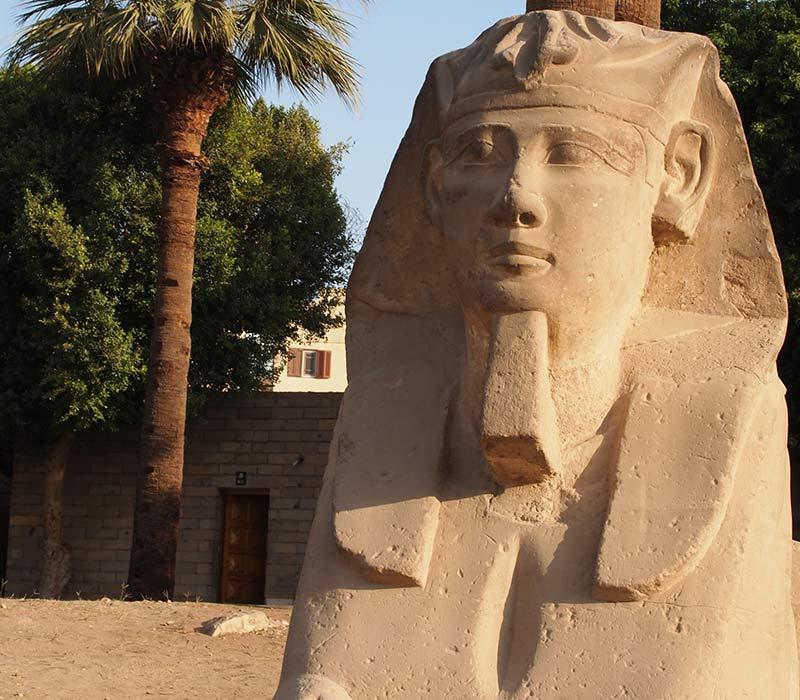 Eine Sphinx in Luxor mit falschem Bart