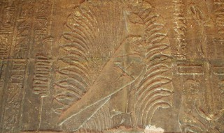 Horus im Papyrusdickicht