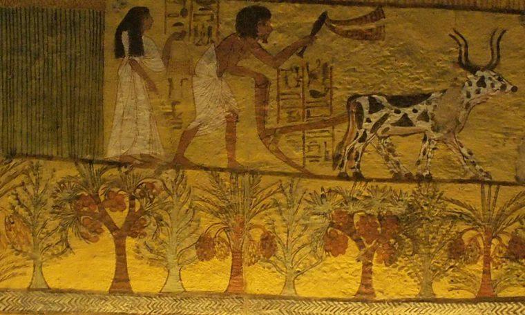 """Sennedjem und seine Frau bestellen die Felder der """"seligen Gefilden"""" Grab des Sennedjem, Theben-West Neues Reich, 18. Dynastie"""