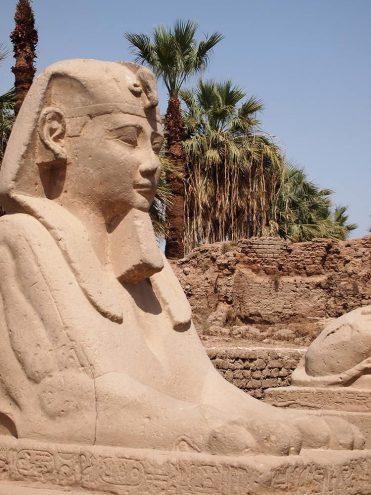 Die Sphingenallee am Luxor-Tempel verband einst den Tempel von Karnak. Nektanebo I. stellte sie erst um 350 v. Chr. fertig