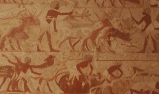 Viehbestand des Amun-Tempels