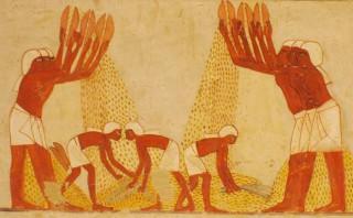 Bauern in Ägypten