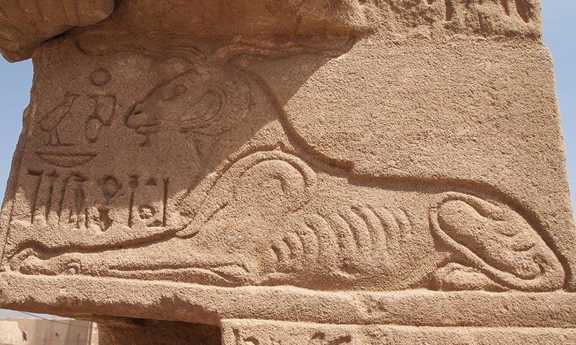 Chnum als Widder Tempel von Elephantine