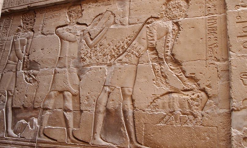Im Horustempel von Edfu sind verschiedene Festrituale über den Triumph Horus gegen Seth abgebildet. Imhotep (Mitte) liest aus einem Ritualbuch, während der Pharao in einer rituellen Handlung eine Gans füttert.