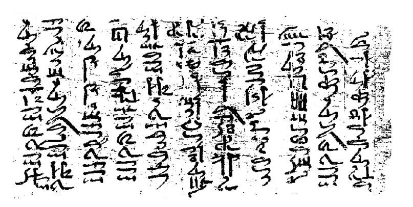 Die ersten elf Zeilen des Schiffbrüchigen auf hieratisch